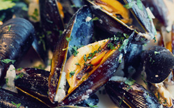 Moules marinieres - mussels in a white wine sauce [France]